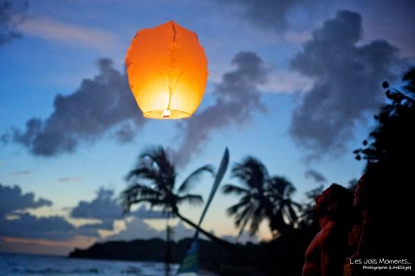 lampion a  Anse Prune Martinique