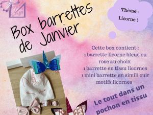 Box barrettes de janvier création accessoire de coiffure barrette licorne petite fille