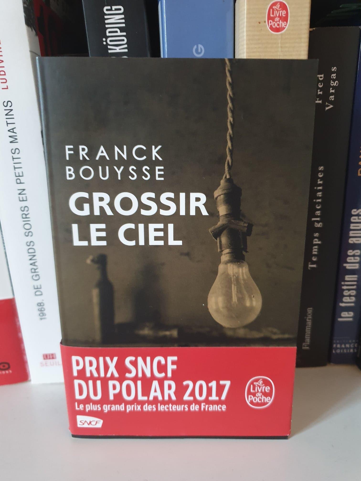 Franck Bouysse Grossir Le Ciel : franck, bouysse, grossir, Grossir, Franck, Bouysse, Lectures