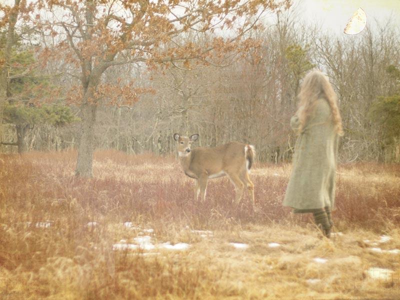 deer-waxing-moon-march