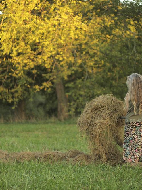 haymakingone