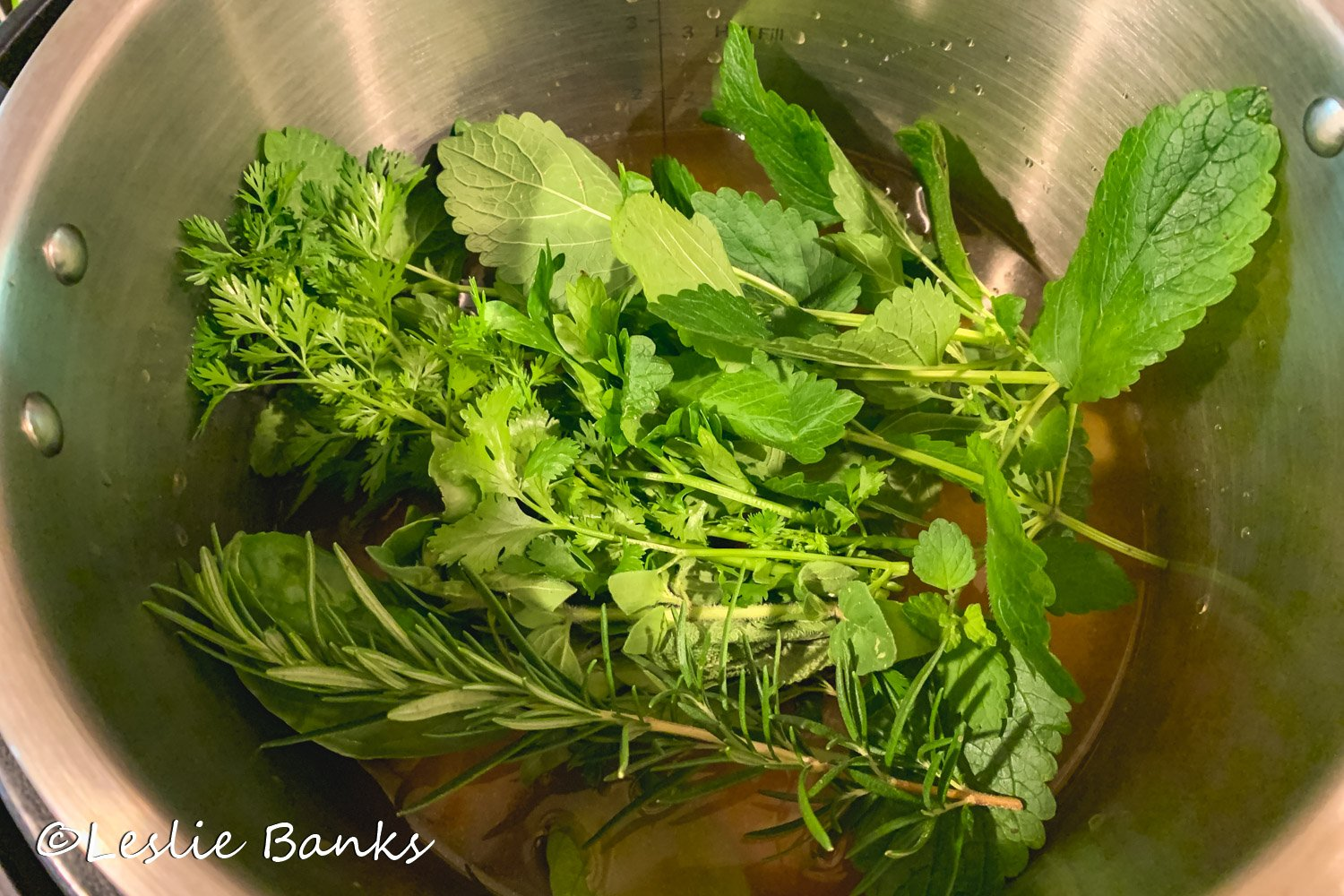 Herbs in the Instant Pot