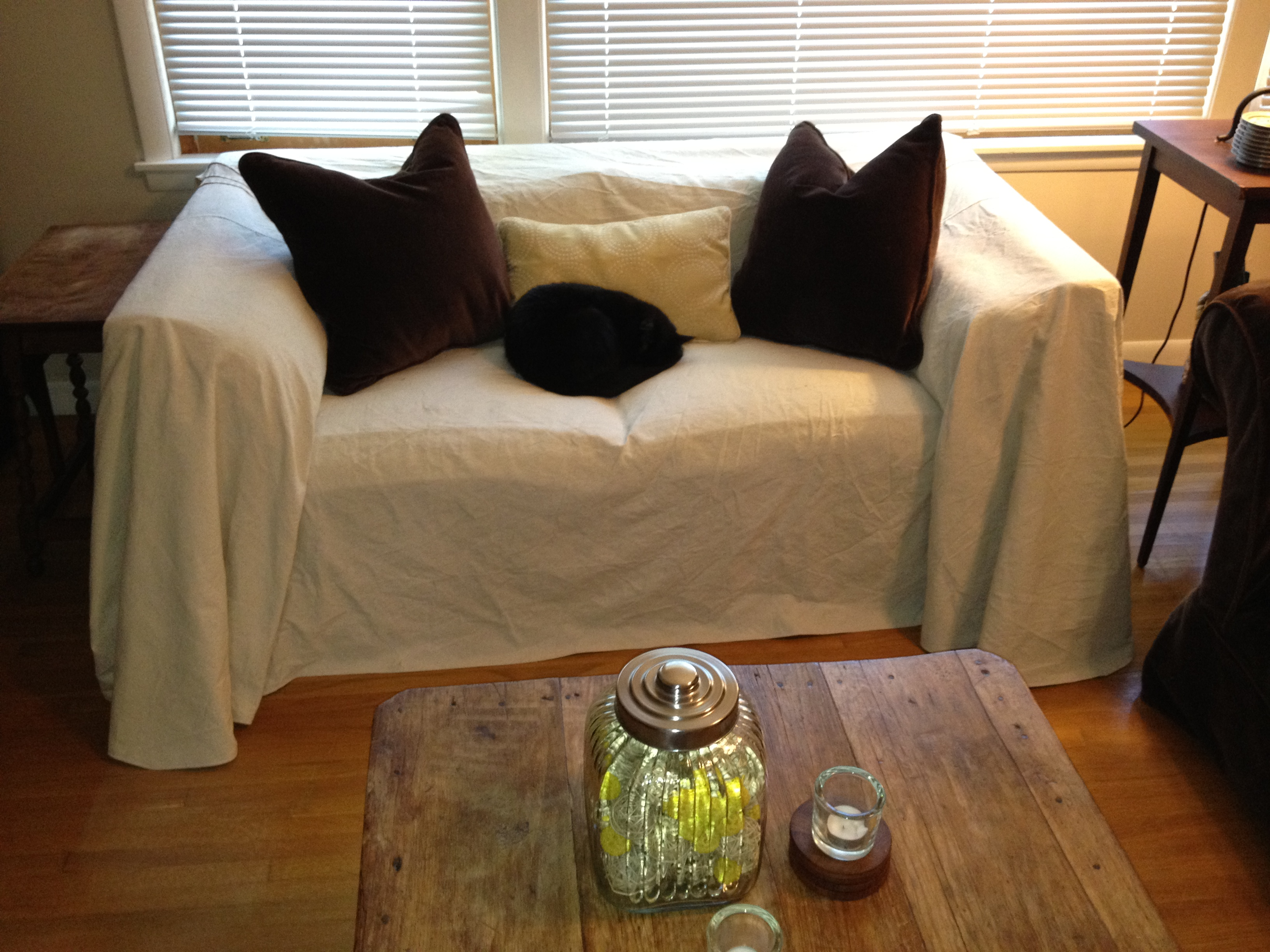sofa cover cloth rate 2 seater recliner cup holders design diva  a couple of cats and canvas couch
