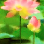 Lotus Art for Life Shifters