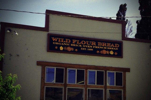 wildflower8