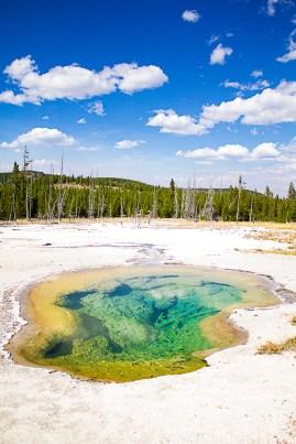Yellowstone-1828