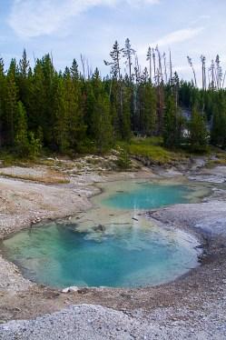 Yellowstone-2336