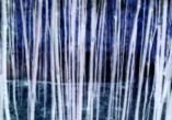China Grove neg blue560