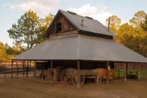 General Coffee State Park - Nicholls, Ga