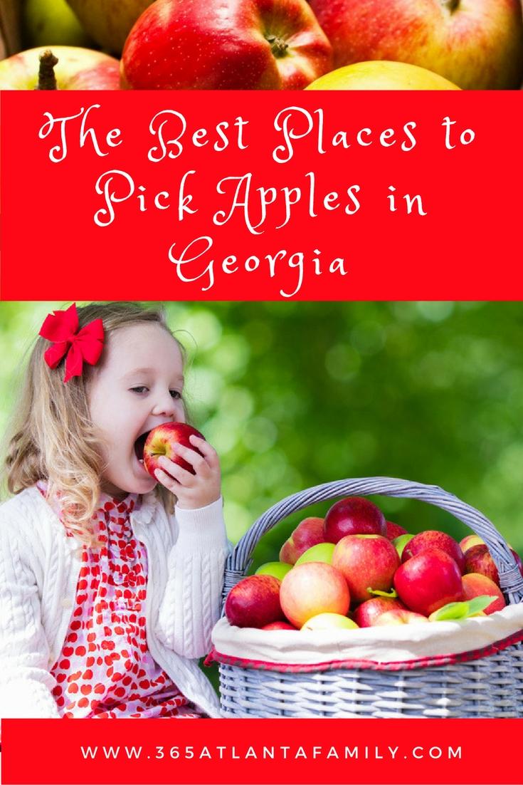 apple picking in ga