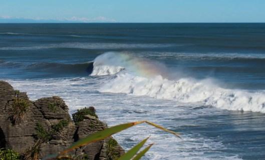 Nouvelle Zélande - Punakaiki - les lubies de louise (11 sur 25)