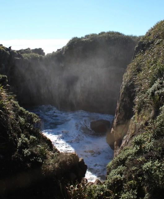 Nouvelle Zélande - Punakaiki - les lubies de louise (13 sur 25)