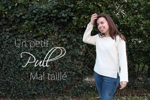 2014-02-16-  Pull beige -  les lubies de louise-titre