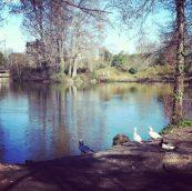 Petite balade au parc pour profiter des premiers jours de soleil... :D