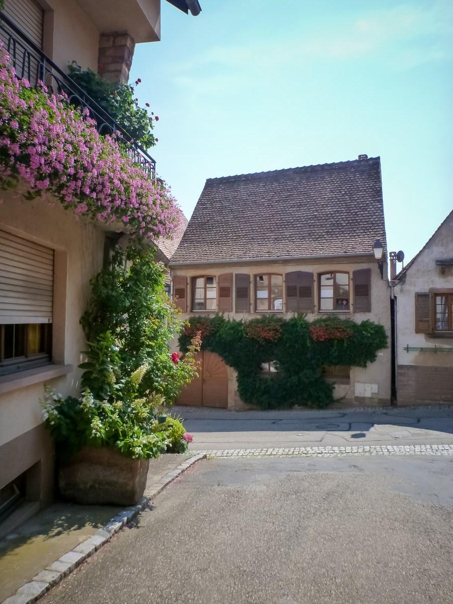 route des vins-alsace-france-mittelbergheim-rue-village-maison-fleurie