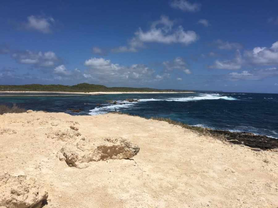 plage-salines-guadeloupe-mer-sable-plage