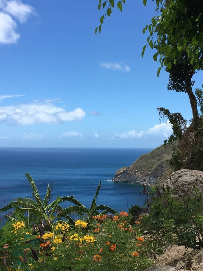jardin-botanique-nature-fleur-caraibes-guadeloupe-basse terre-vue panoramique