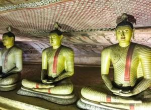 Nombreux bouddhas dans les grottes de Dambulla au Sri Lanka