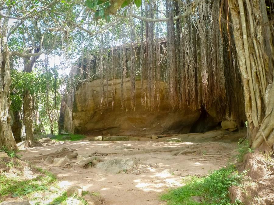 Au coeur de la végétation d'Anuradhapura au Sri Lanka