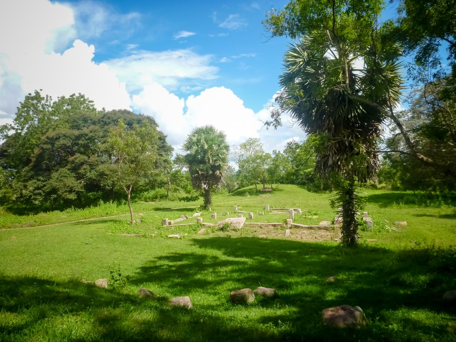 Paysage très vert du Sri Lanka