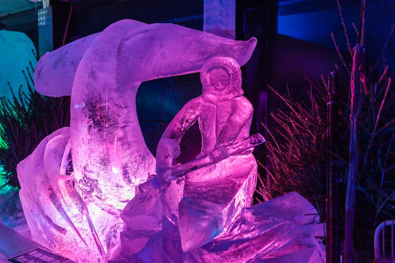 Les inuits dans le Ice World d'Arras