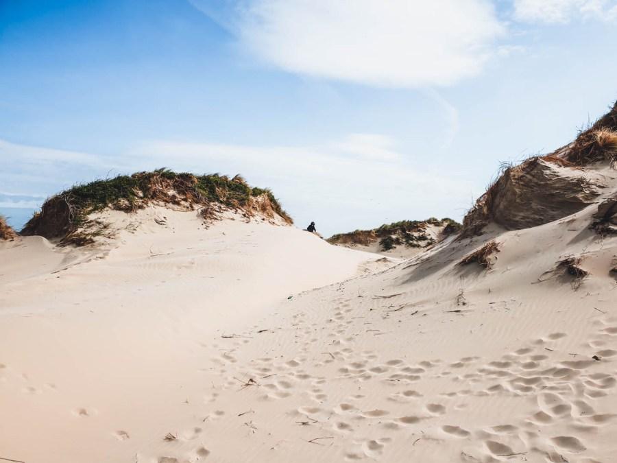 Dune de sable à Zuydcoote