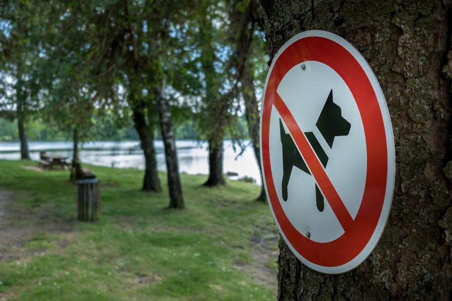 Panneau d'interdiction au chien