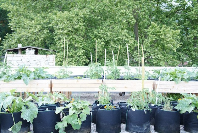 permaculture grenoble