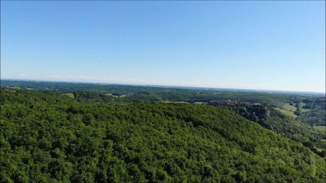 Forêt de la Grésigne avec vue sur Puycelsi