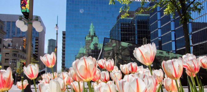 Deux jours à Ottawa
