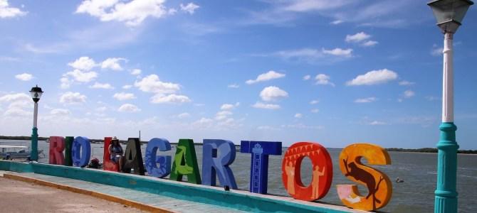 Mexique – Yucatan – Jour 4 – Rio Lagartos