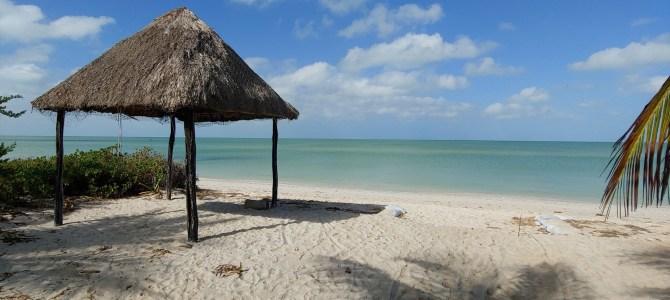 Mexique – Yucatan – Jour 7 – La casa de celeste Vida, Celestun