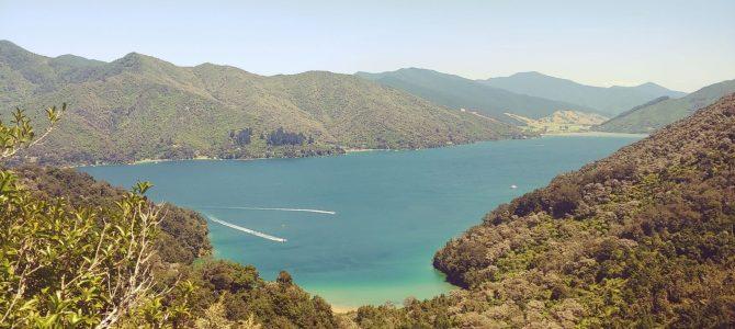 Nouvelle Zélande – île du Sud – Queen charlotte track
