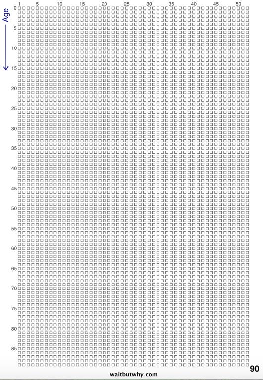Bloc de centaines de carrés représentant chacun une semaine