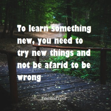 to learn something new you need to try new things and not be afraid to be wrong