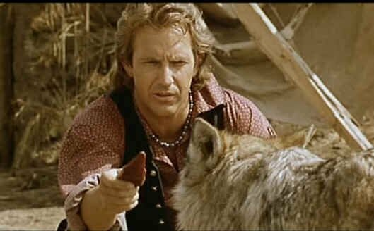 Danse avec les loups Kevin Costner film Lynda Guillemaud roman