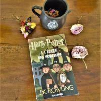 HARRY POTTER Tome 1 : A l'école des sorciers de J. K. ROWLING