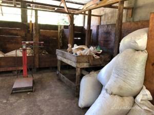 Local de fermentation