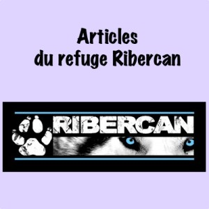 "Articles ""Ribercan"""