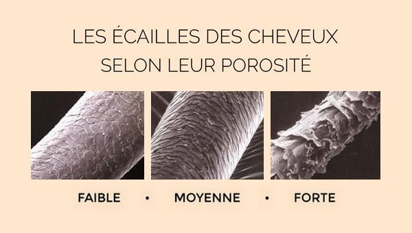 les écailles des cheveux vues au microscope, classées selon leur niveau de porosité