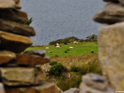 Lords of the Dance of the Ring of Kerry - Le retour de L'Irlande