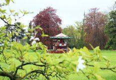 Jardin-botanique-Geneve-8