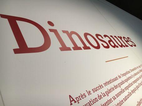dinosaure_museum_2