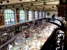 Museum_Paris_3
