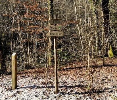 Balade dans l'Arboretum du Vallon de l'Aubonne