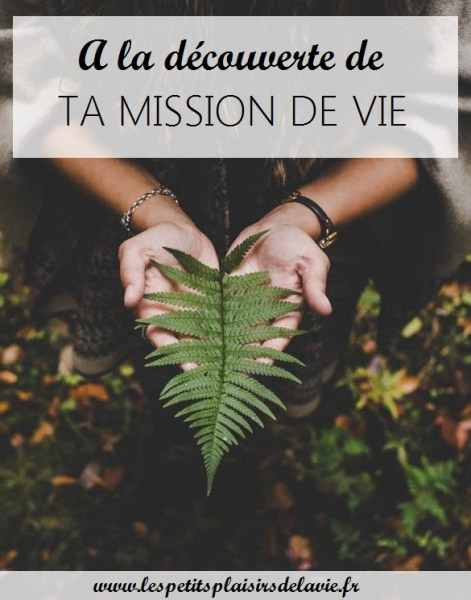 mission de vie commune