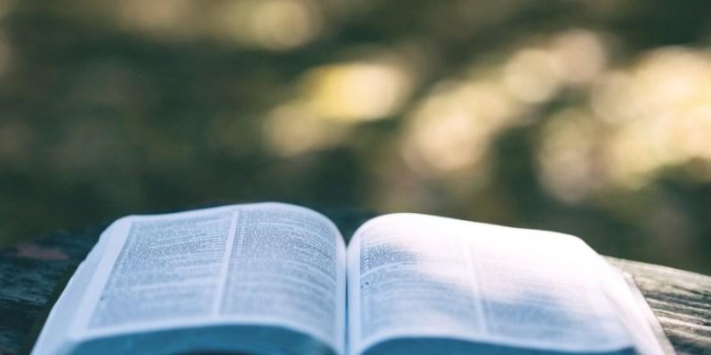 référencement : un glossaire pour les débutants