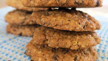 cookies healthy flocons d'avoine les plaisirs sains