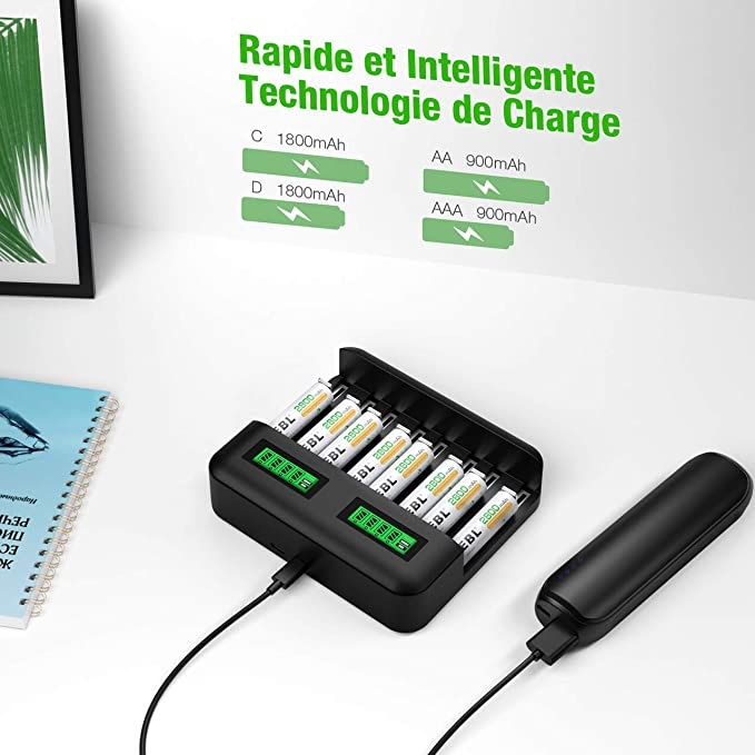 Pile rechargeable + chargeur + prise mural