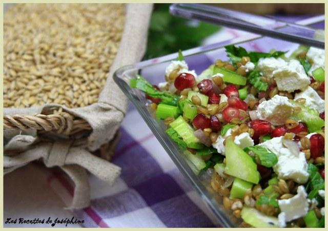 Salade petit Epautre 2